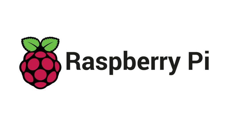 Raspberry Logo
